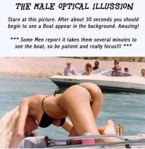 maleopticalillusion