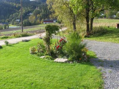 høstbilder hage 005