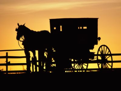 Amish%20Horse%20Drawn%20Buggy,%20Pennsylvania